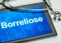 Borreliose: häufig diagnostisch unerkannt und therapeutisch einseitig angegangen