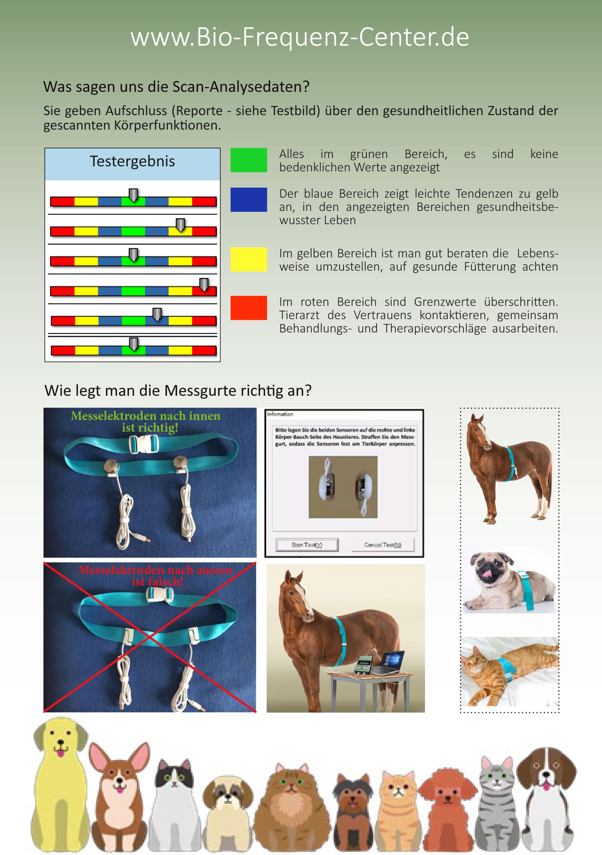 Animalium Scan - BQAS Bio Quantum Analyse System